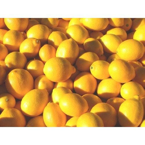 Premium Organic Fresh Lemons - 6 Lb Case