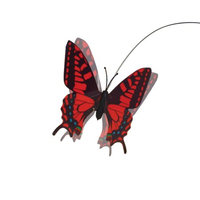 Ourpet's Company Pet Zone Fly By Replacement Butterfly Cat Toy