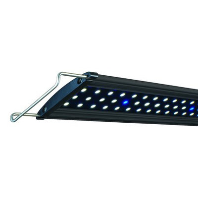 Lifegard Aquatics Ultra-Slim Freshwater Blue/White LED Light - 48
