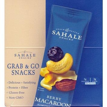 Sahale Snacks Berry Macaroon Almond Mix – Kids Favorite Snack -9 x 1.5 Oz