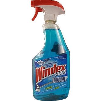 Windex 90139