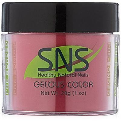 SNS 170 Nails Dipping Powder No Liquid/Primer/UV Light