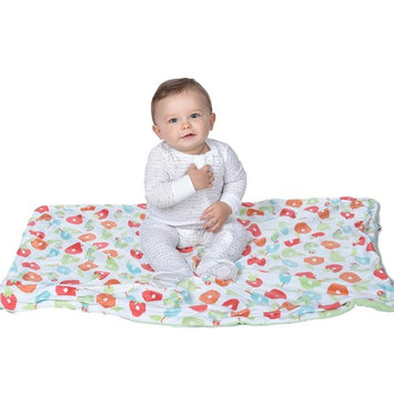 Eric Carle Very Hungry Caterpillar Pink Hearts Printed Blanket, 30'' x 40''