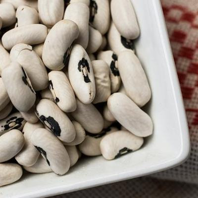 European Soldier Beans