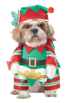 California Costume Collections Elf Pup Dog Costume