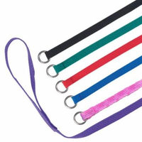 Slip Leads, Kennel Leads with O Ring for Dog Pet Animal Control Grooming, Shelter, Rescues, Vet, Veterinarian, Doggy Daycare - 4 foot Length x 1/2 inch Width, by Downtown Pet Supply (12 Pack)