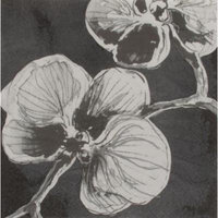 Madhouse By Michael Aram Orchid Luncheon 6.69'' Napkin (Set of 16)