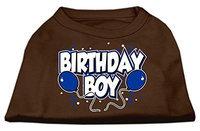 Ahi Birthday Boy Screen Print Shirts Brown XS (8)
