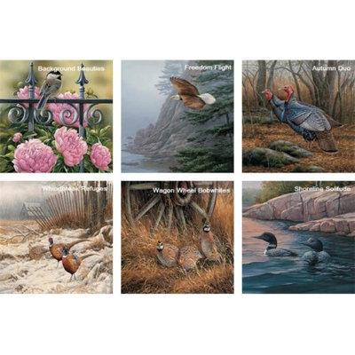 Hi-Look Inc. Rosemary Millette Wild Birds assorted