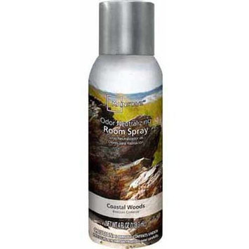 Mainstays Room Aerosol Spray, Coastal Woods