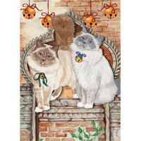 Pipsqueak Productions C878 Cat Holiday Boxed Cards