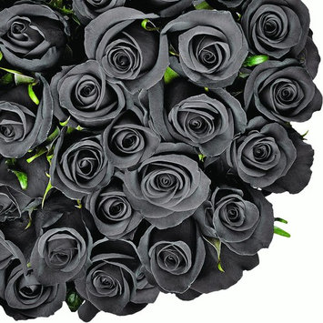 Natural Fresh Flowers - Tinted Black Roses, 20