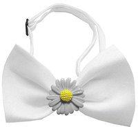 Ahi White Daisies Chipper White Bow Tie