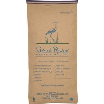 Great River Organic Milling, Pancake Mix, Buckwheat Buttermilk, Organic, 50-Pounds (Pack of 1)