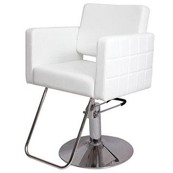 Bosalaya New Barber Chair White Styling Hair Beauty Salon Spa Equipment