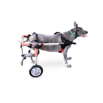 Handicappedpets.com Dog Wheelchair For Medium Dogs 26-69 lbs Pink - By Walkin' Wheels