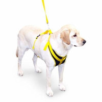 Walkin' Front Safety Dog Harness w/ Seatbelt & Leash
