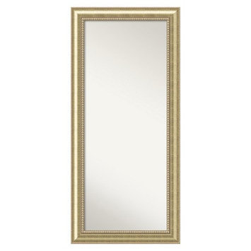 Amanti Art Astoria Champagne Finish Wood Floor Mirror