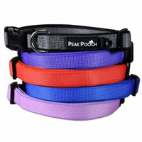 Designer Dog Collar, Soft Padded Adjustable, For Small, Medium and Large Dogs (Red, Large)