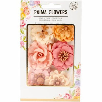 Prima Marketing Paper Flowers 6/Pkg-Paradisia