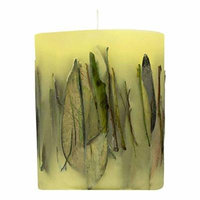 Acqua di Parma Fruit and Flower with Oolong Tea Leaves Candle 900g - Pack of 6