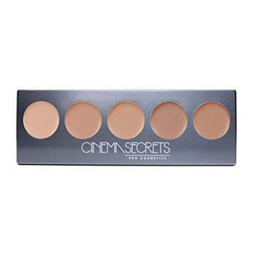 Ultimate Foundation 5-in-1 PRO Palette, 500a Series BEIGE-PINK UNDERTONES (LIGHT TO MEDIUM)