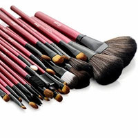 Glow 30 Piece Make up Brushes Set in Red Case