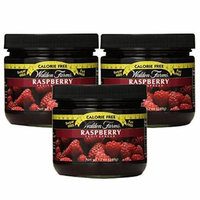 Walden Farms Calorie Free Fat Free Gluten Free Sugar Free Fruit Spreads (Raspberry, 3 Jars)
