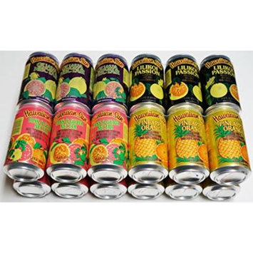 Hawaiian Sun Drinks 24 Pack Sampler (Pass-O-Guava,Pineapple-Orange, Lilikoi-Passion Fruit, Guava) 6 Pack of Each