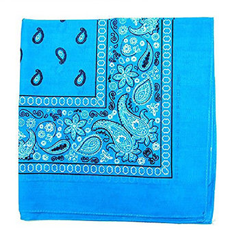 Pack of 50 Daily Basic 100% Cotton 22 x 22 Paisley Printed Bandana