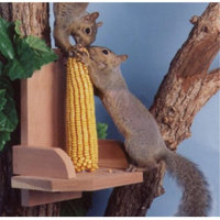 Songbird Essentials SEWF2040 Squirrel Platform feeder