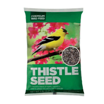 Asa Agrotech Private Limited Premium Thistle Seed Wild Bird Feed, 5lbs
