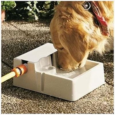 Automatic Self Watering Indoor Outdoor Pet Fountain Fresh Water Dog or Cat Bowl