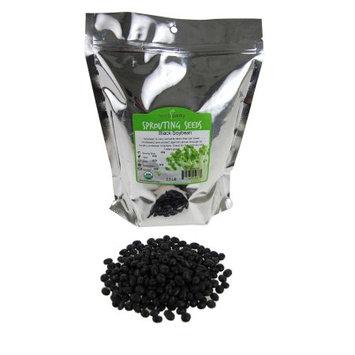 Handy Pantry Organic Black Soy Bean Seeds-Non-GMO Soybeans, Tofu, Soymilk- 2.5 Lb