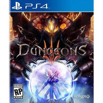 Kalypso Media Dungeons 3 PC Games [PCG]