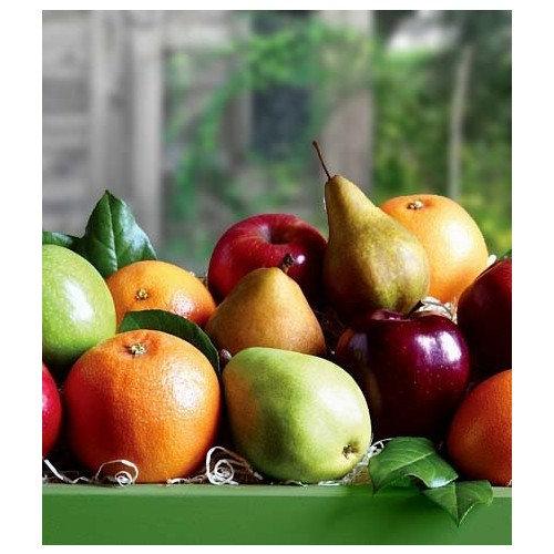 Organic Fruit Gift Box 12 Count