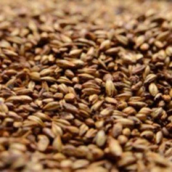 Briess 2-Row Caramel 80L Crushed Malt - 10 lb. Bag