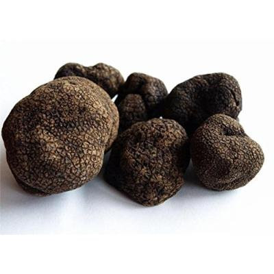 Urbani Truffles Fresh Black Winter Truffles (2 oz)