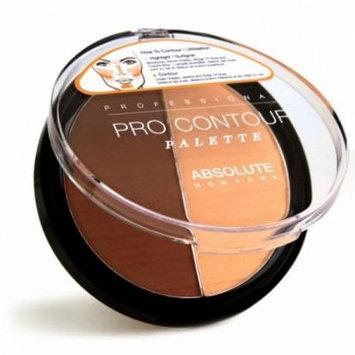 (6 Pack) ABSOLUTE Contour Palette - Dark