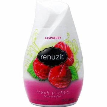 Renuzit Fresh Picked Collection Gel Air Freshener, Raspberry 7 oz (Pack of 4)