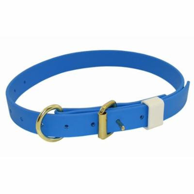 Sky Blue Boithane Dog Collar 1-Inch Wide and Adjustable from 14 to 24 Inches
