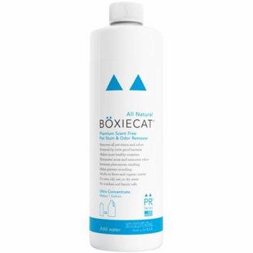 Boxiecat Premium Scent-Free Stain & Odor Remover, 16 Oz Ultra Concentrate