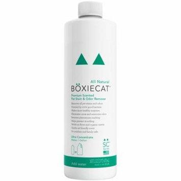 Boxiecat Premium Scented Stain & Odor Remover, 16 Oz Ultra Concentrate