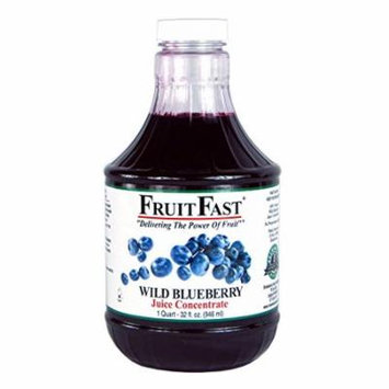 FruitFast - Wild Blueberry Juice Concentrate