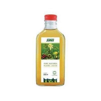 Celery Juice Organic (200mL) Brand: Salus Haus
