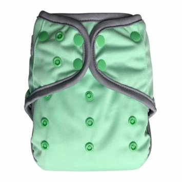 EcoAble Baby Day & Night All-In-One AIO Cloth Diaper with Insert, Mint Green