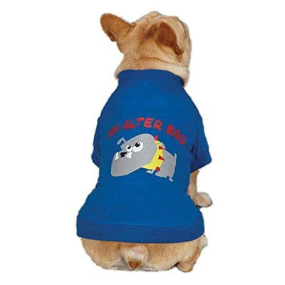 Casual Canine ZM3438 14 19 Alter Ego Tee for Dogs, Small/Medium, Blue
