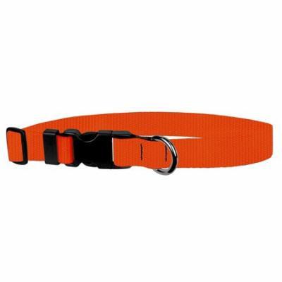 Classic Adjustable Dog Collar: Small, Hot Orange, 3/4 inch Nylon by Moose Pet Wear