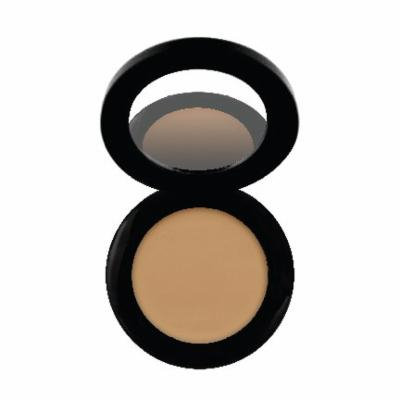 Perfecting Under Eye Concealer - Certified Gluten-Free (GF), Soy-Free, Synthetic Dye-Free, Vegan, Non-Toxic, 100% Natural (Praline)