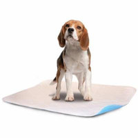 """LennyPads Ultra Absorbent, Reusable, Training and Travel Washable Pee Pads - Single Sheet (24""""x36"""") XL Long"""